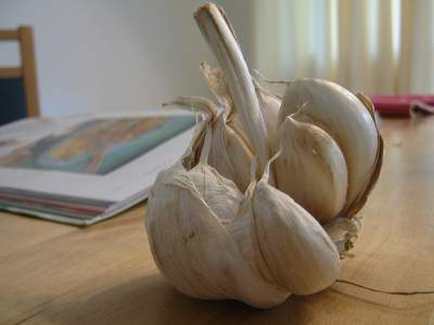 Garlic For Cold And Flu A Natural Remedy Allergy