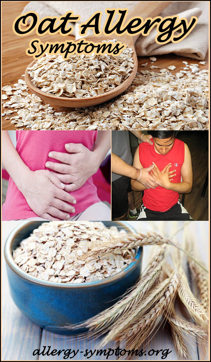 Oat Allergy Symptoms And Diagnosis Allergy Symptoms Org
