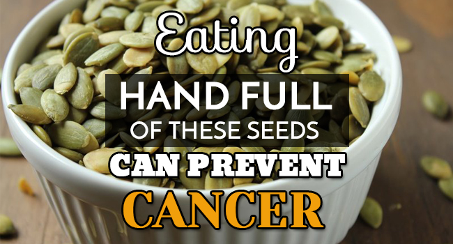 Eating Hand Full Of These Seeds Can Prevent Cancer ...
